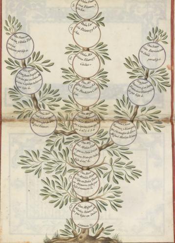 arbol genealógico protocolo